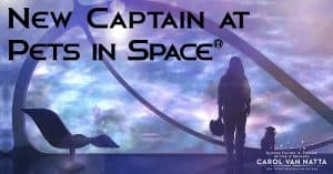 Welcome to Pets in Space. Illustration of a silhouette of a woman and a pet facing a spaceship window showing a view of a galaxy. Text says New Captain at Pets in Space.